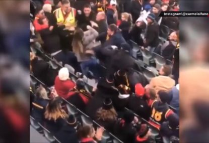 Another crowd fight caught on camera during Crows-Bombers match