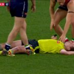 Umpire knocked out after accidental collision with Docker
