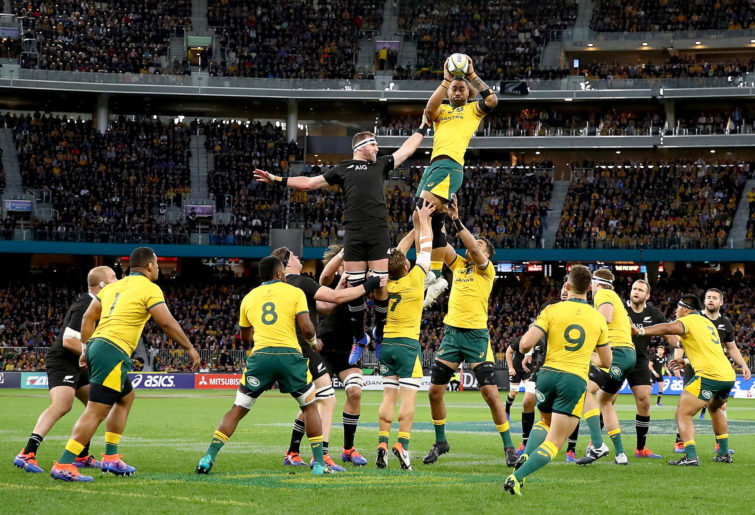 Wallabies lineout.