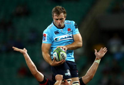 Brumbies poach Will Miller from Waratahs