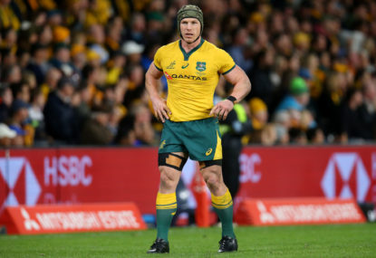 David Pocock is ready for the Wallabies but not as starter