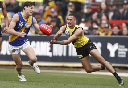 VFL Grand Final match results: Richmond bring home the cup in dramatic struggle with Williamstown