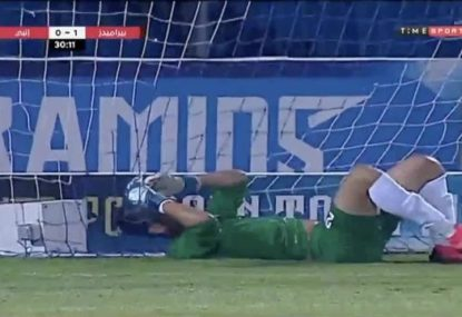 Is this the best save since the infamous scorpion kick?