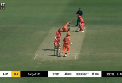 Scorchers' opening batter takes one of the best catches you'll see this WBBL