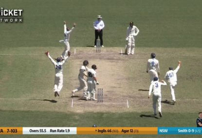 Steve Smith jags a wicket thanks to another umpiring shocker