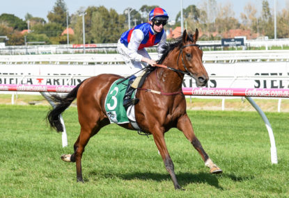 The Mounting Yard: Underwood Stakes day preview