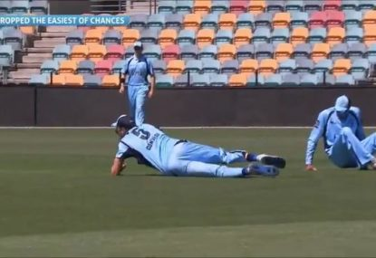 NSW pair produce the most comical 5 seconds of cricket this summer