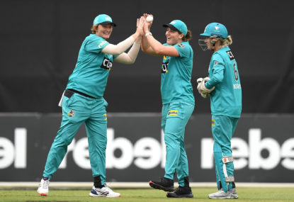 Which WBBL stars put their hand up for the T20 World Cup?