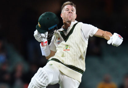 David Warner caps off comeback year with third Allan Border medal