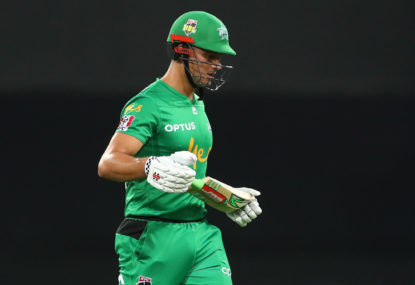 Is Marcus Stoinis up to international standard?