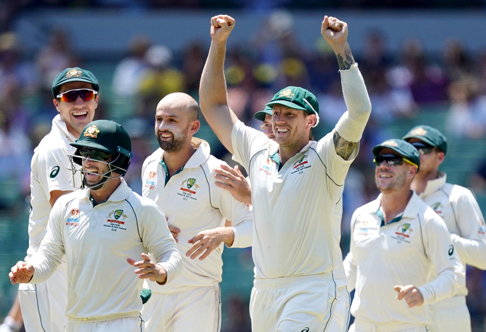 Australia celebrate a New Zealand wicket.
