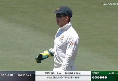 'No excuses': Tim Paine butchers a run out as BJ Watling barely survives