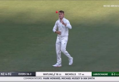 Marnus Labuschagne's part-time leggies get roasted by the Aussies