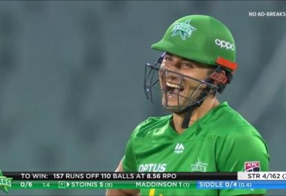 Peter Siddle's cheeky appeal for clear bump ball cracks Marcus Stoinis up