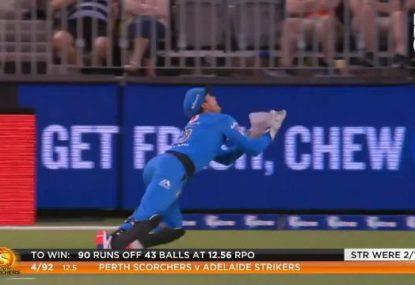 Alex Carey takes a superb wicketkeeper's catch
