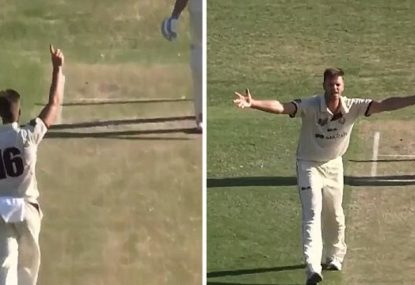 Umpire inexplicably turns down LBW so plumb the bowler didn't even bother appealing