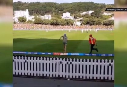 New Zealand cricket fan has one of the shortest streaks ever