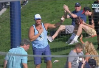 Baseball fan goes airborne to take a stunning catch off a foul ball
