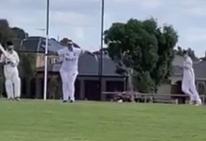 Bowler celebrates wicket... with a TikTok dance?