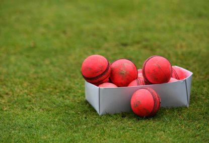 Five of the best: Ranking the most unstoppable backyard cricket balls