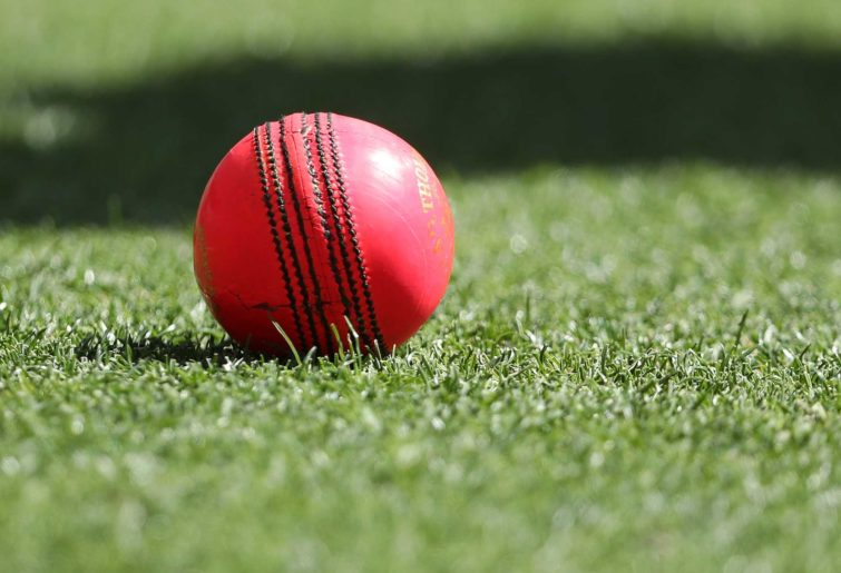 Generic image of pink cricket ball.