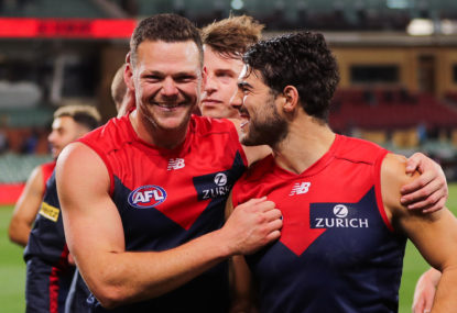 Season 2020 AFL combined team: Four of six (Hawks, Demons, Kangaroos)