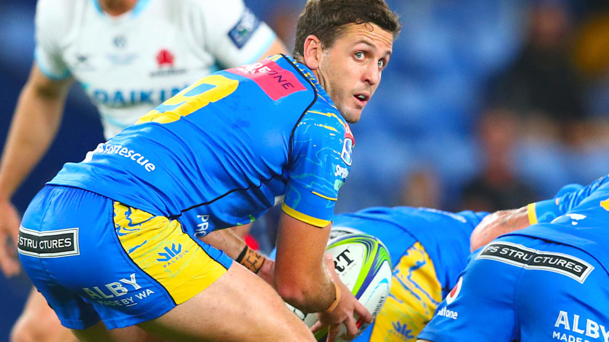 Western Force lock down skipper with contract extension
