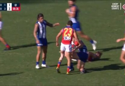 Charlie Cameron gives his stepladder an earful after screamer