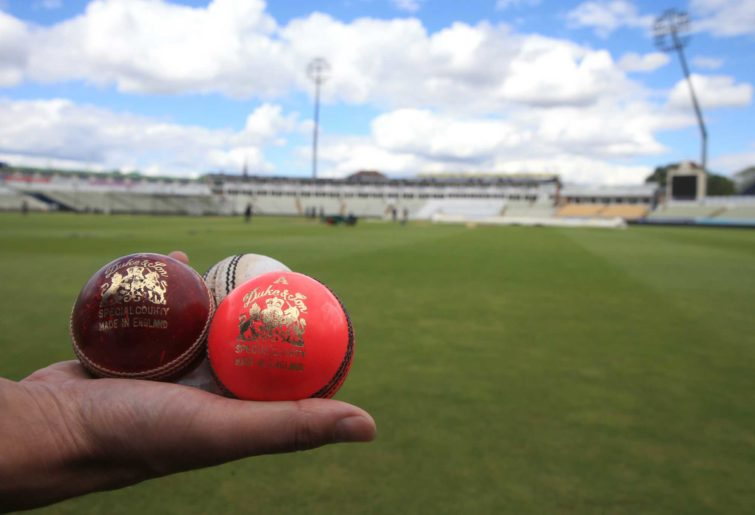 Generic cricket balls: pink, white and red,
