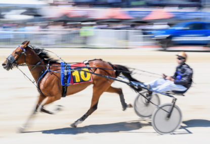 Harness racing selections: Tuesday December 1st