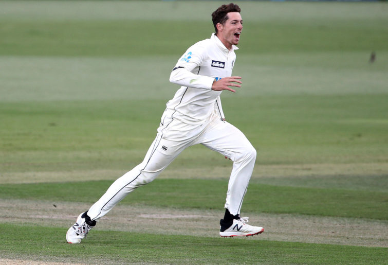 Mitchell Santner and New Zealand celebrate