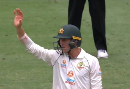 Commentators lose it at Marnus Labuschagne's totally random appeal