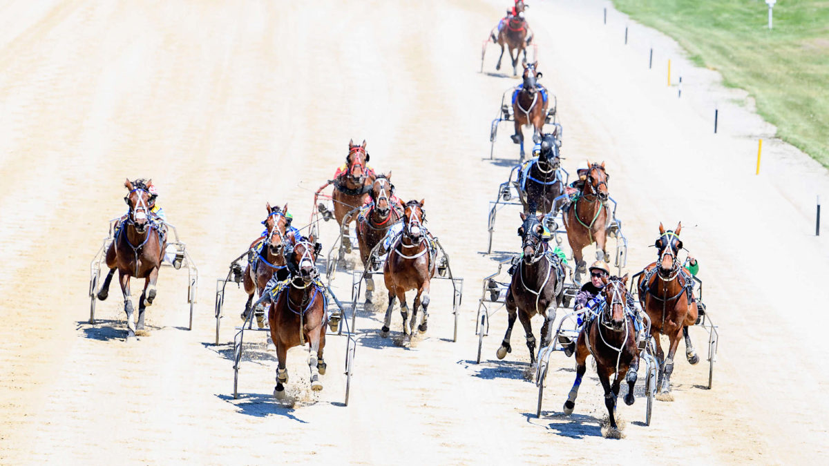 Harness racing selections: Thursday, July 22