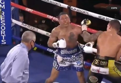 One of the most brutal KOs you will ever see
