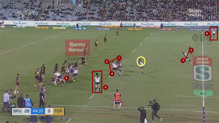 brumbies attacking structure