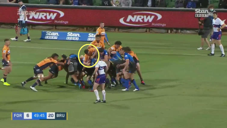 force maul vs brumbies