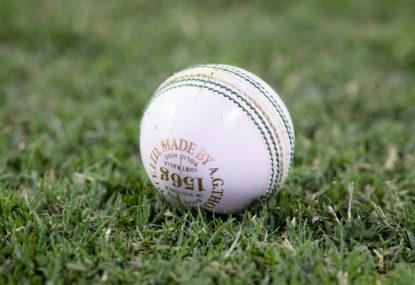 Rewind to ODI cricket in Berbice