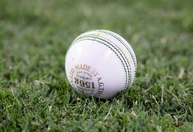 Generic white cricket ball