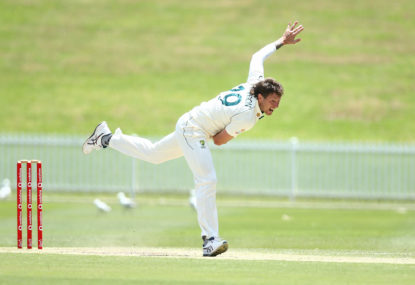 James Pattinson is charging, Marcus Stoinis is flagging and Alex Carey's been anointed