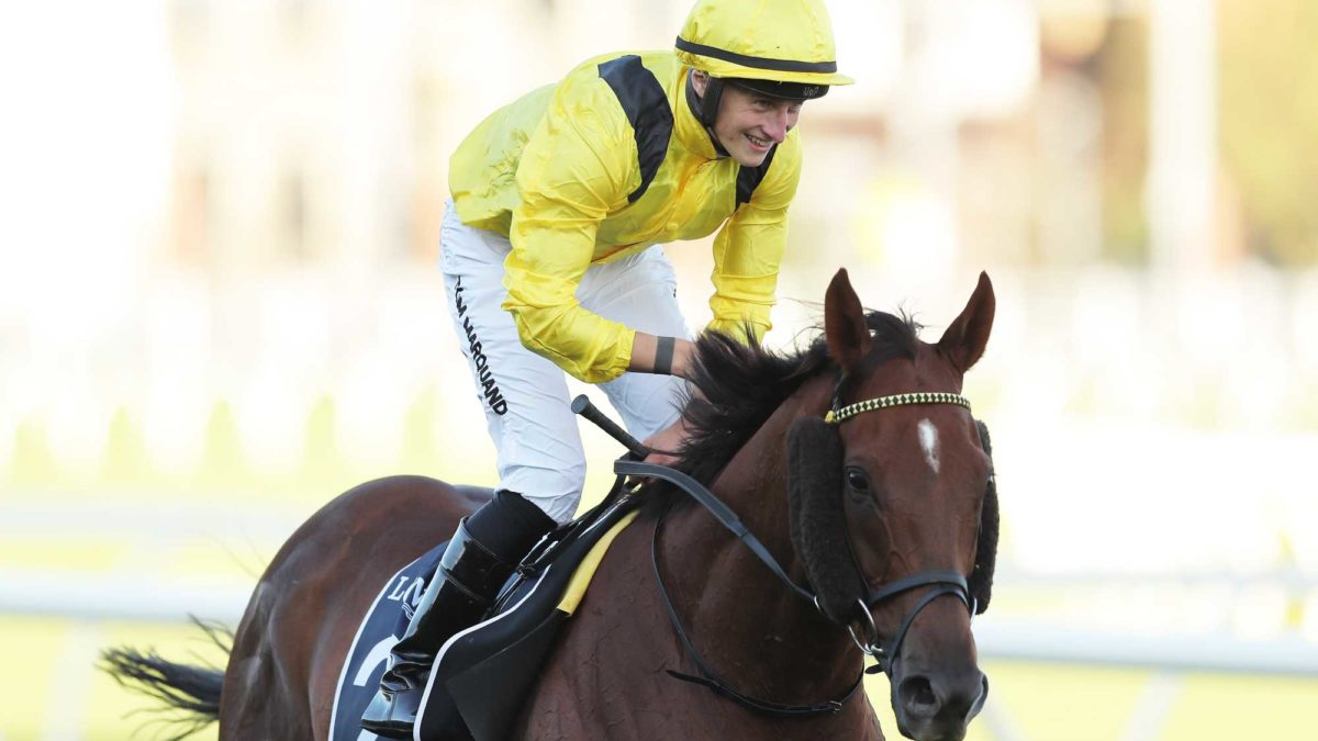 The race that should stop the nation: Queen Elizabeth Stakes preview
