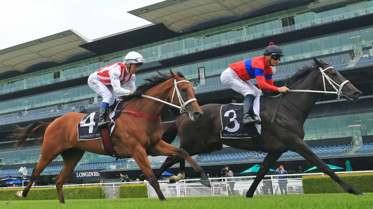 George Main Stakes day: Group 1 preview and tips