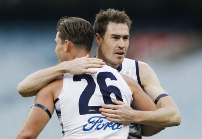 Emptying the kitty litter: What does the future hold for Geelong?