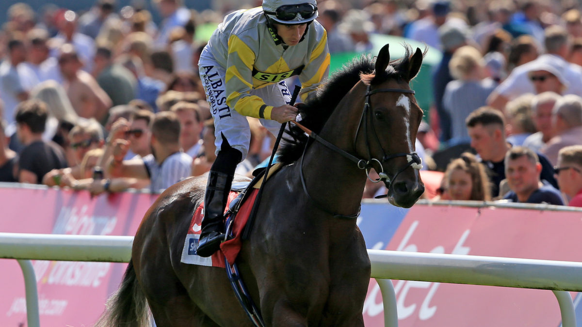 'It might disgust the purists': My plan to revive Aussie racing