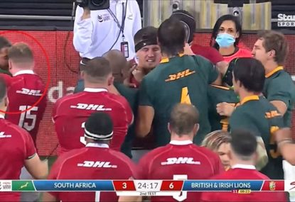 Did Stuart Hogg get caught biting Springboks fullback?