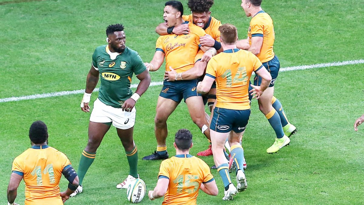 Brumbies secure Wallabies' breakthrough star until after World Cup
