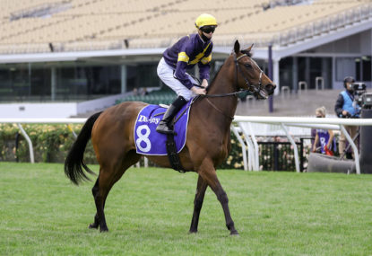 Derby Day at Flemington: Tips and previews for each race