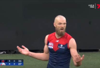 WATCH: Was Max Gawn robbed of a goal by controversial call?
