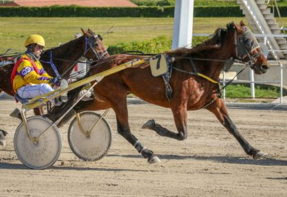 Harness racing selections: Wednesday, October 6
