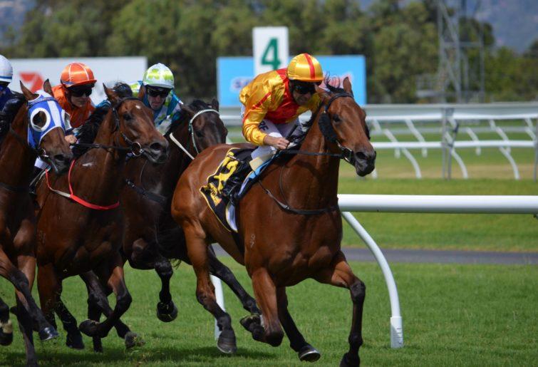 Horse race in Australia