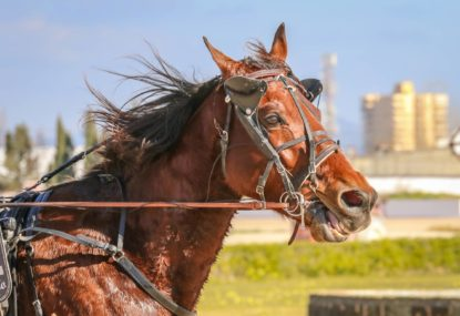 Harness racing selections: Monday, October 4